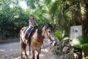 horse ride Mata Nativa bx